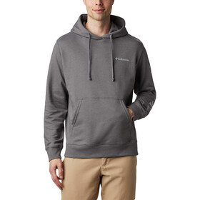 Columbia Viewmont II Sleeve Graphic Huppari Miehet, city grey/columbia grey